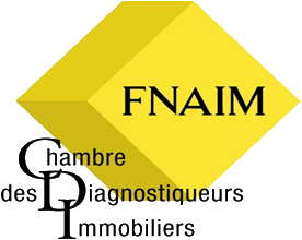 Diagnostic immobilier Moule